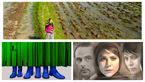 گردهمایی فیلمهای ایرانی در پراگ