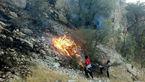 آتش سوزی 2 هکتار از اراضی جنگلی کلاریز طزره را خاکستر کرد