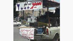 سیر رایگان در صورت برد ایران! +عکس