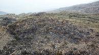 مهار آتش سوزی در منطقه حفاظت شده گنو