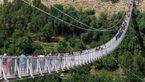عامل قطع درخت های سیب پارک جنگلی مشگین شهر دستگیر شد