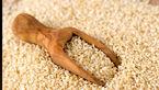 کشف جدید برای درمانی بودن دانه کنجد