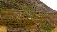 کشف زمین خواری 300 میلیونی در اسفراین