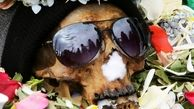 عجیبترین مراسم خاکسپاری در جهان + عکس ها
