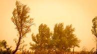سرعت وزش باد در زابل به 90 کیلومتر بر ساعت رسید