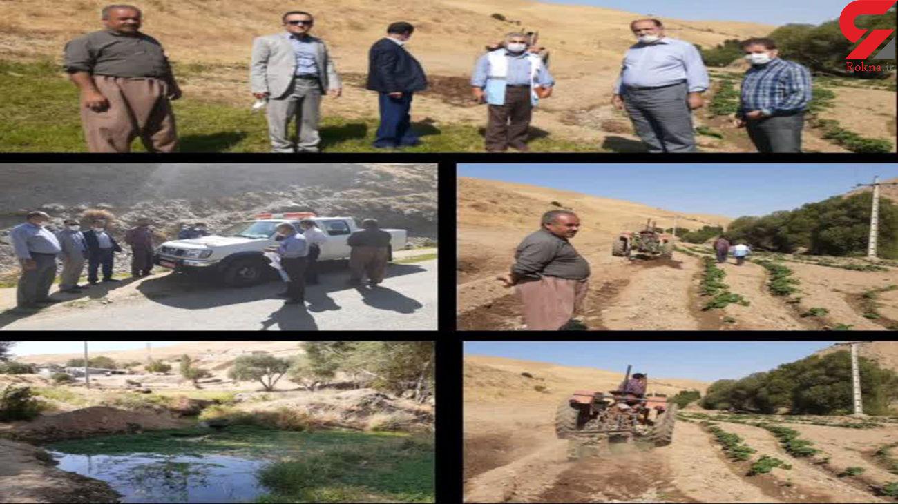 تخریب مزرعه صیفی با استفاده از آب فاضلاب در مهاباد