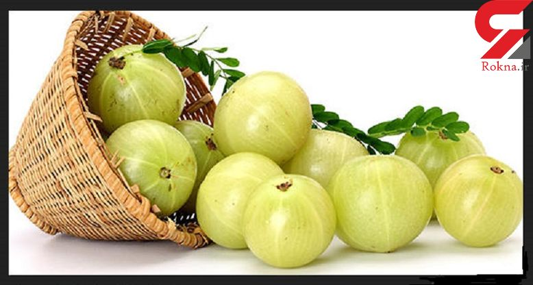 انگور فرنگی هندی سرشار از ویتامین ث