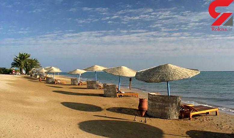 حمله مرگبار کوسه به گردشگر در ساحل دریا در مصر + عکس