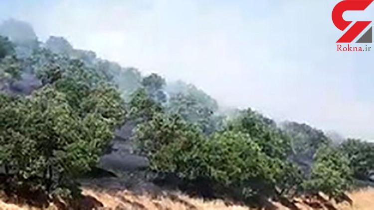 آتشسوزی مراتع در روستای کوری + فیلم