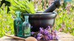 گیاهان کاهنده استرس/مقابله با بیماری آلزایمر با این گیاهان