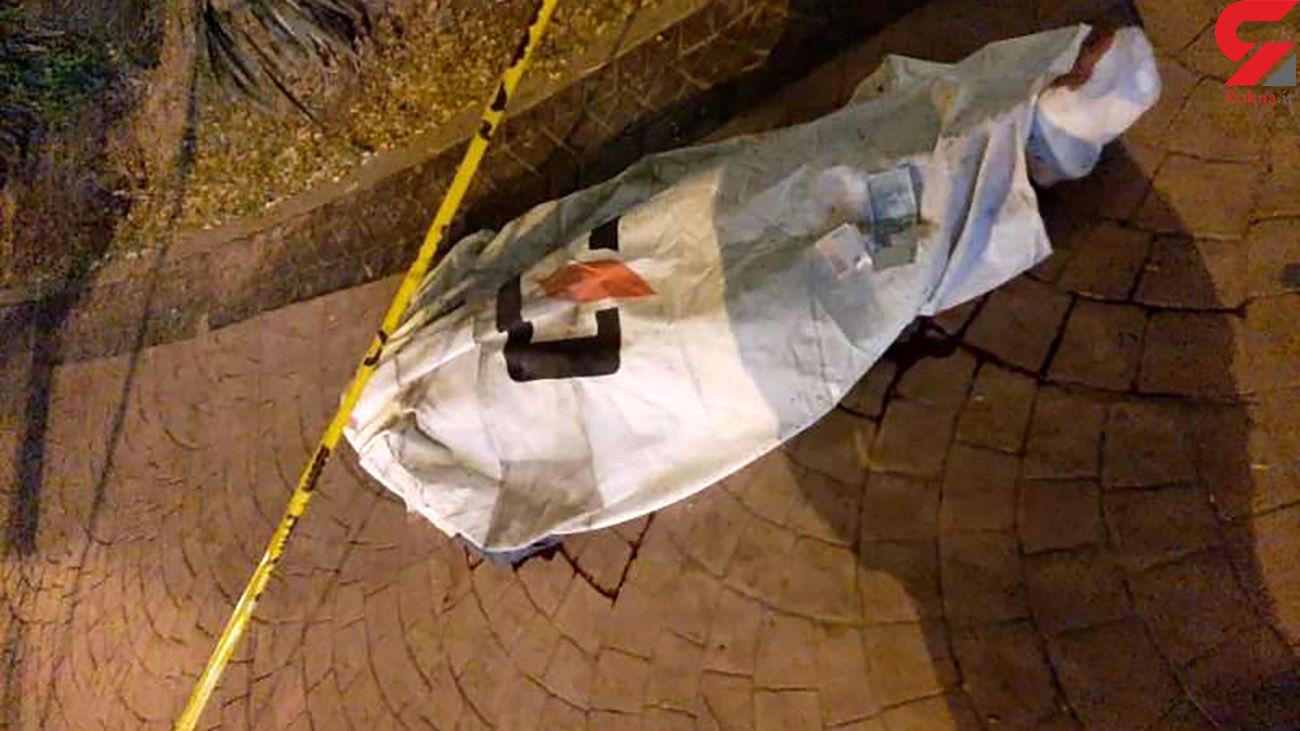 تصادف مرگبار پژو با مرد جوان در بزرگراه شهید زین الدین + عکس