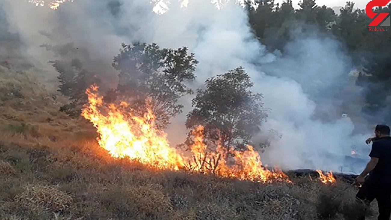 تداوم آتش سوزیهای زنجیرهای در اندیکا