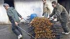 طرز تهیه ماهی دودی در بندر انزلی با عکس