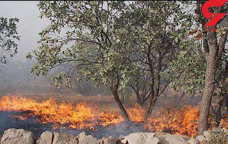 آتش به جان 100 هکتار از مراتع دهلران افتاد