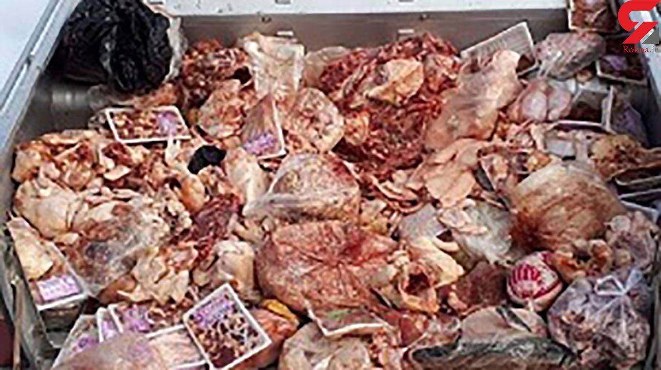دستگیری توزیع کننده گوشتهای فاسد در فسا