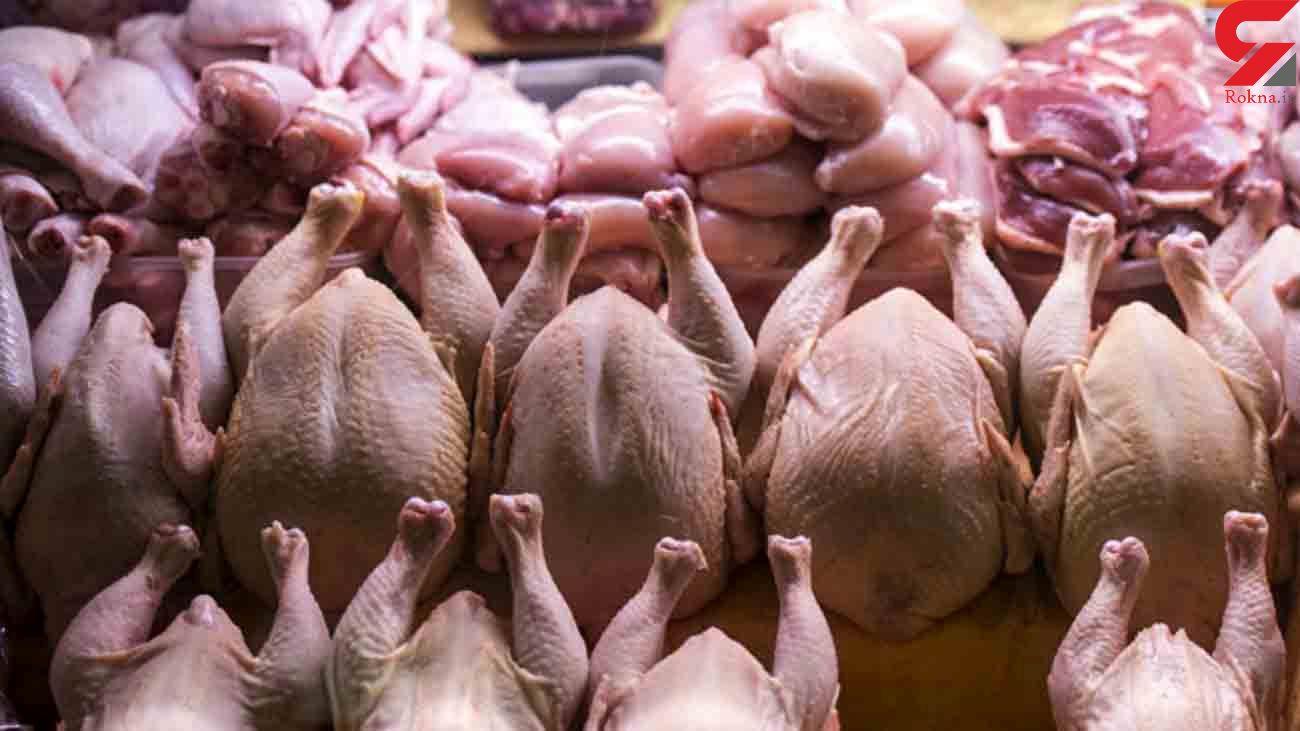 کاهش شدید قیمت مرغ به زودی
