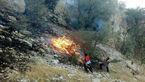 آتش سوزی در منطقه جنگلی قلات سرچهان