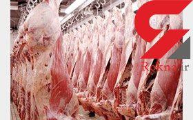 ثبات قیمت گوشت در بازار/ واردات و توزیع گوشت منجمد بدون