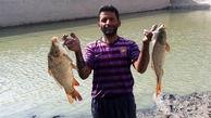 ماجرای جوان بیکار و بی پولی ایرانی  که در عرض یک سال میلیاردر شد!+ تصاویر