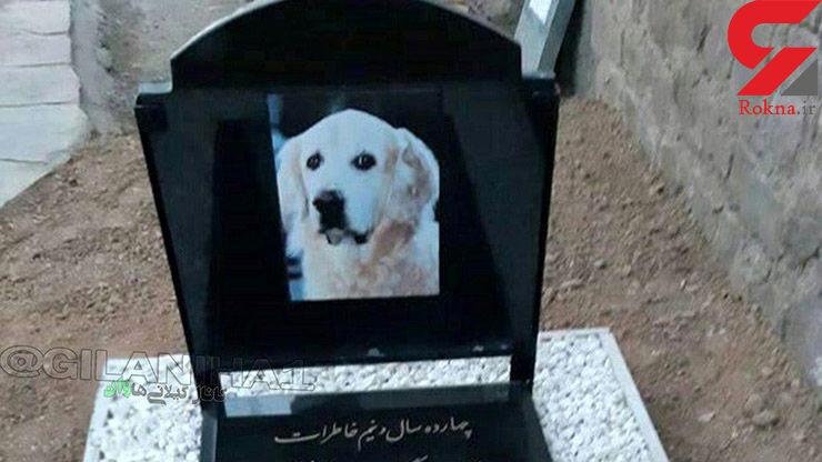 دستگیری ۳ نفر از عوامل دفن یک سگ در قبرستان سنگر رشت+ عکس سنگ قبر