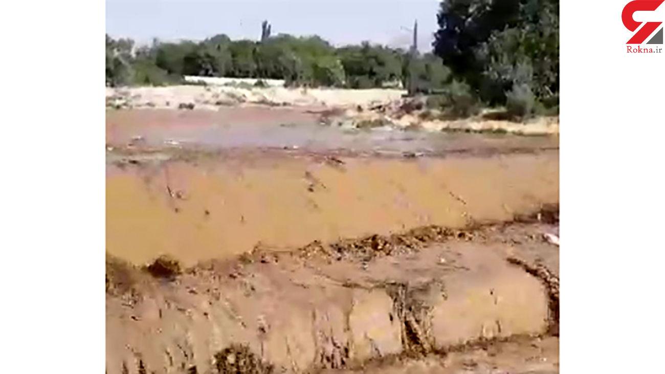 فیلم طغیان رودخانه گنبرف در دهستان قاضیجهان / صحنه وحشتناکی بود