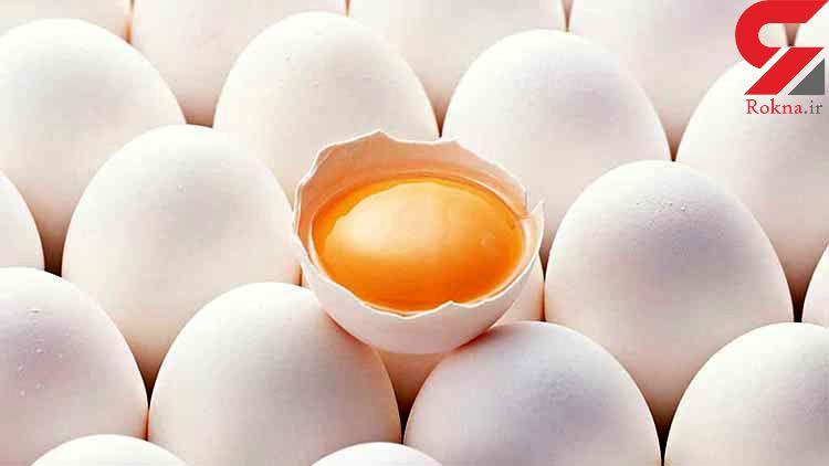 افزایش ۲۰۰ تومانی نرخ تخممرغ در بازار