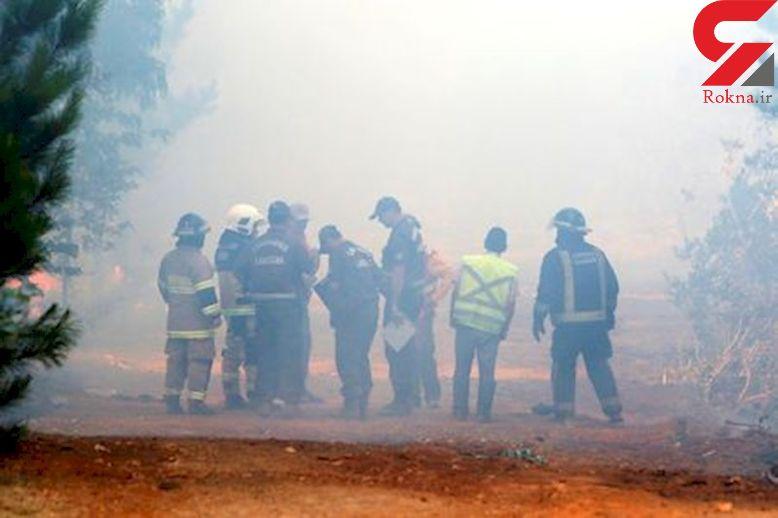 آتش سوزی شدید در جنگلهای شیلی + عکس