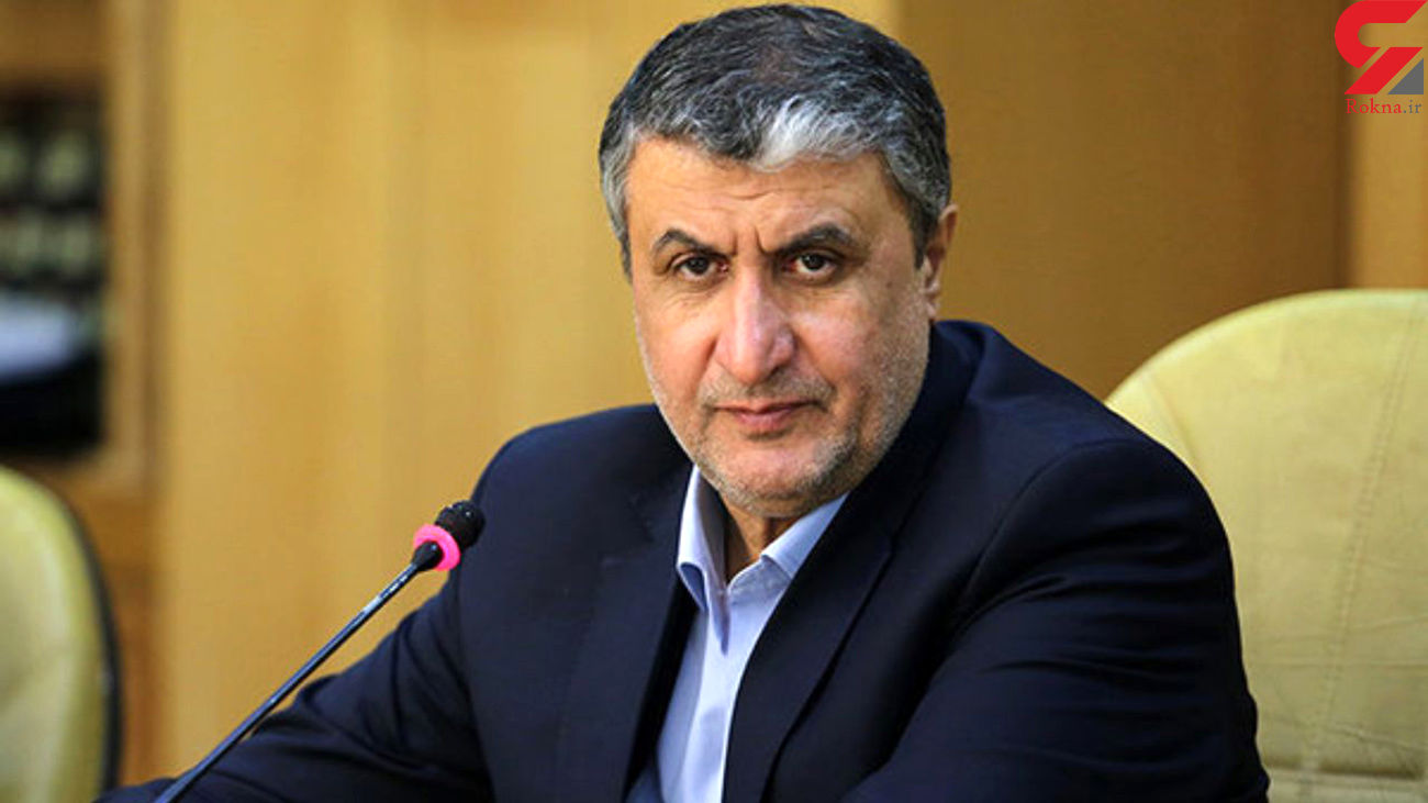 اسلامی: دولت و سازمان انرژی اتمی به اجرای قانون راهبردی مقید هستند