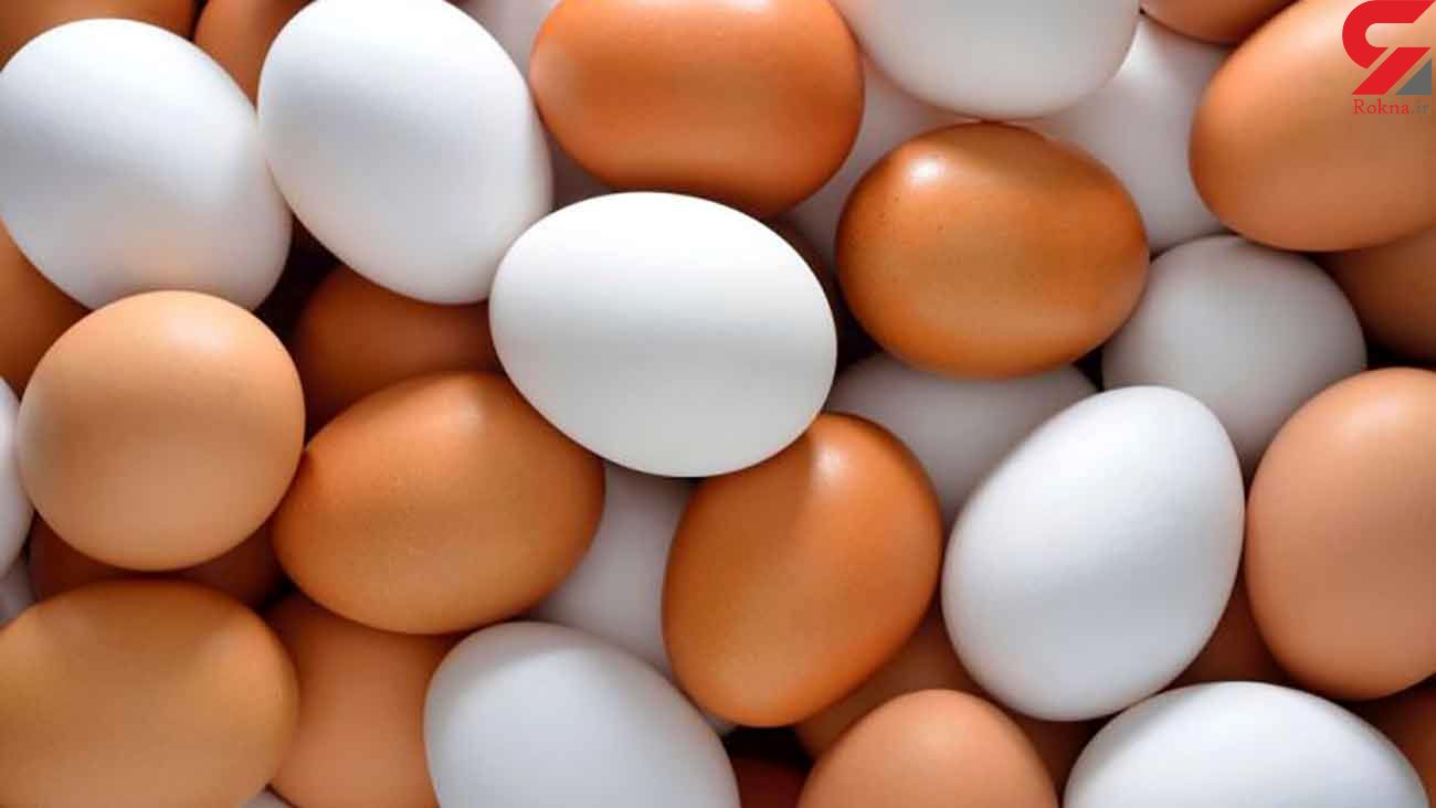 به زودی شاهد بحران در بازار تخم مرغ خواهیم بود