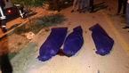 عکس جنازه های 3 نوجوان شیرازی در صحنه مرگ + جزییات