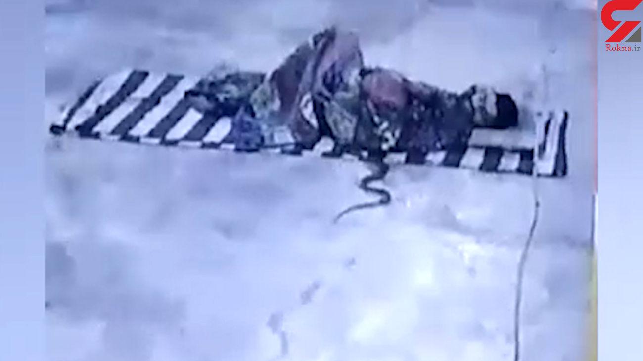 حمله برق آسا مار کبری به مرد هندی در خواب + فیلم