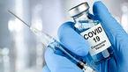 آستانه تولید دو واکسن ایرانی کرونا