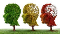نشانه های اولیه بیماری آلزایمر