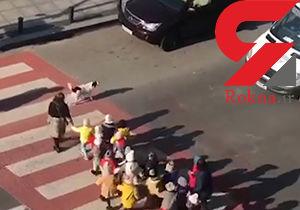 اقدام دیدنی یک سگ در خیابان شلوغ + فیلم / گرجستان