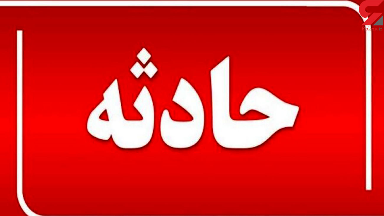 شتر یک نفر را در ایرانشهر کشت / مقصر کدام بود؟