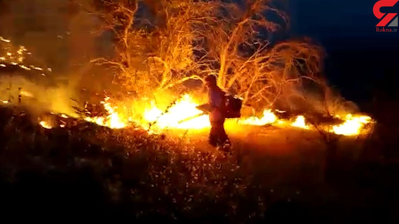 """فیلم اسفناک از آتش جنگل های """"دیل"""" گچساران ! / بعد از 4 روز مهار شد"""
