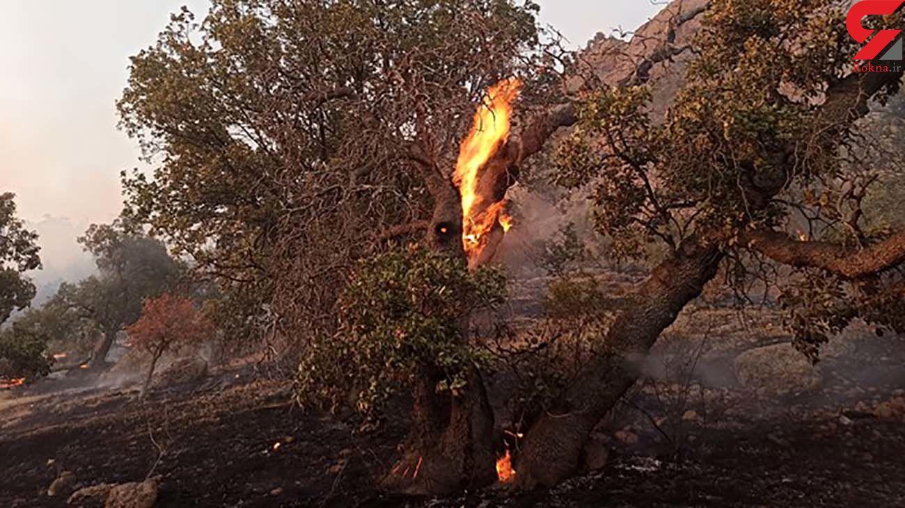 آتشسوزی مراتع در ارتفاعات خراسان شمالی