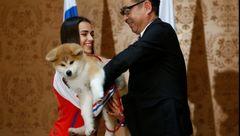 قهرمان المپیک ژاپنی یک توله سگ از مقامات کشورش هدیه گرفت+تصاویر