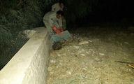 شغال گرفتارشده در حوضچهای در پلدختر از مرگ حتمی نجات یافت + عکس
