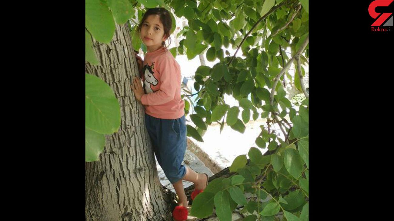جسد آیلار 8 ساله در پشت بام به میله بسته شده بود! / در بندرعباس فاش شد + عکس