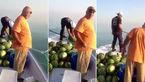 دو ماهیگیر در اتفاقی نادر ، از دریا هندوانه صید کردند !+فیلم