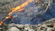 ثبت 40 مورد آتشسوزی در مراتع بوشهر
