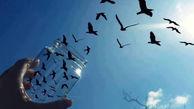 آزادی 27 زندانی از زندان مرکزی ارومیه