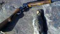 شناسایی 2 اکیپ شکارچی متخلف در روانسر