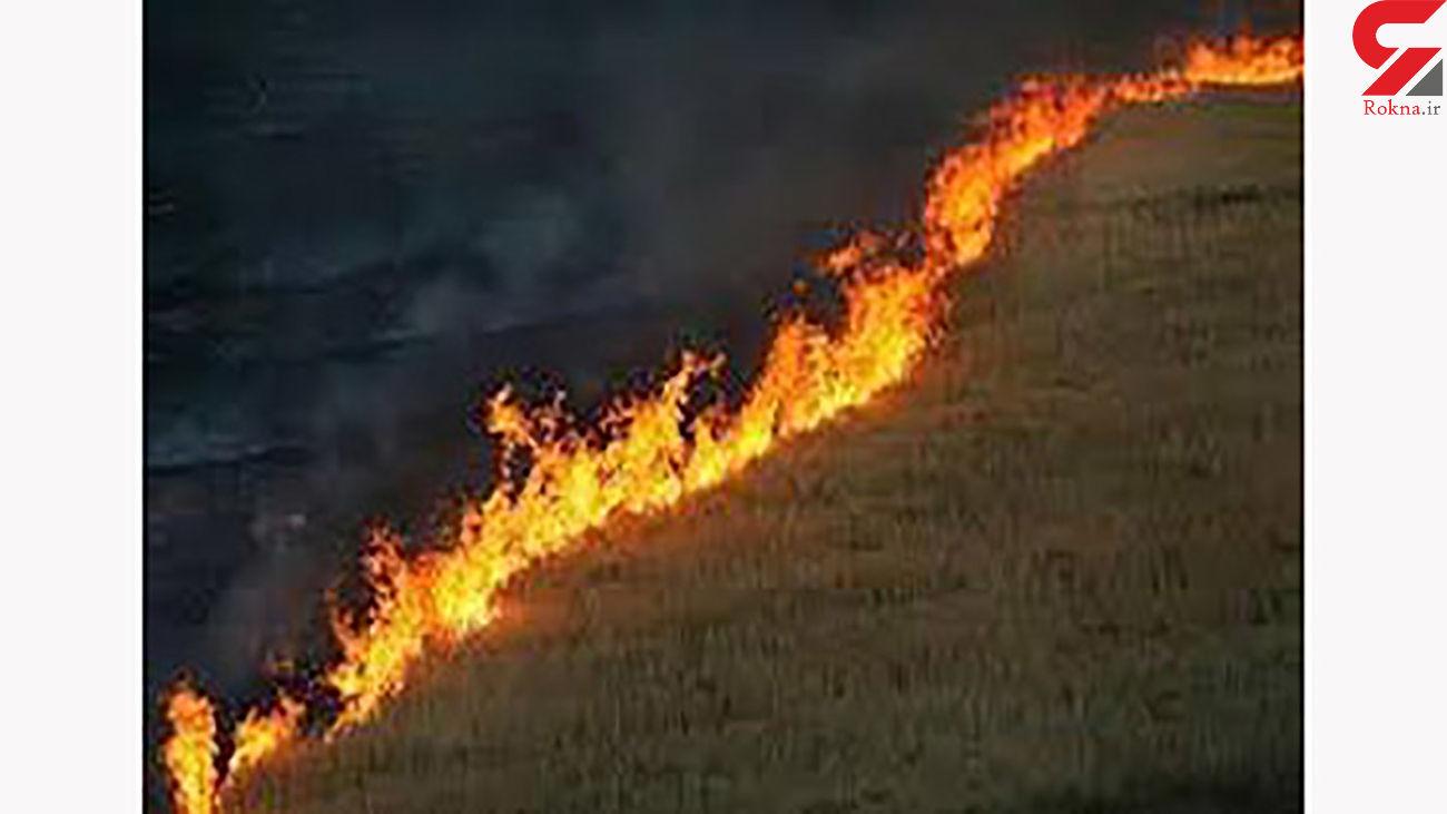 آتش سوزی 4 تن خرمن جو را خاکستر کرد / در شیروان رخ داد