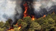700 آتش سوزی در جنگل های مریوان برای دستگیری اشرار ! / هیرکانی می سوزد و مسئولان گریه نمی کنند!