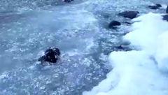 این دریاچه یخدربهشت است! +فیلم باورنکردنی