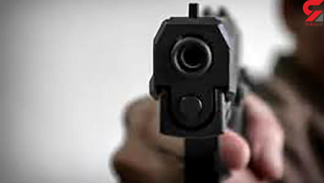 بازداشت 6 مرد مخوف بخاطر شلیک در پارک جنگلی یاسوج/