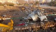 حضور تیمهای تشخیص هویت پلیس در محل سقوط هواپیما + فیلم