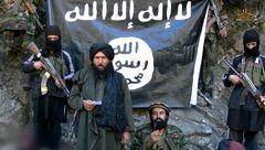شناسایی 416 اهدا کننده پول به داعش توسط فرانسه